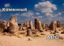 Каменный лес, раскинувшийся среди цветущей Болгарии