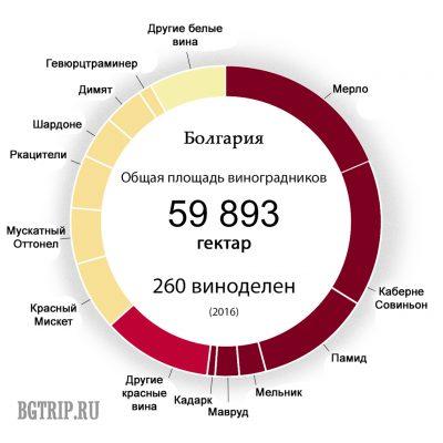 Соотношение производства белых и красных вин Болгарии по сортам
